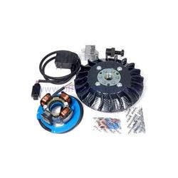 Parmakit ignition with variable advance cone 57036.22 - 19 kg with riveted IDM flywheel for Vespa 1.0 - ET50 - Primavera - PK (carbon look fan)