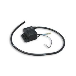 Electronic control unit for Malossi ignition
