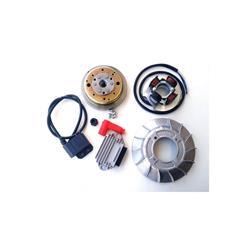 VMC-Zündung mit variablem Vorschubkegel 19 Gewicht 1,4 kg, genietetes Schwungrad für Vespa ET3 50 PK