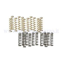 25090829 - Kit molle frizione di ricambio per frizione Pinasco Light Clutch e Power Clutch (12 + 12 molle)